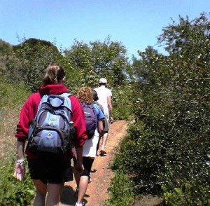 hiking Topanga Canyon