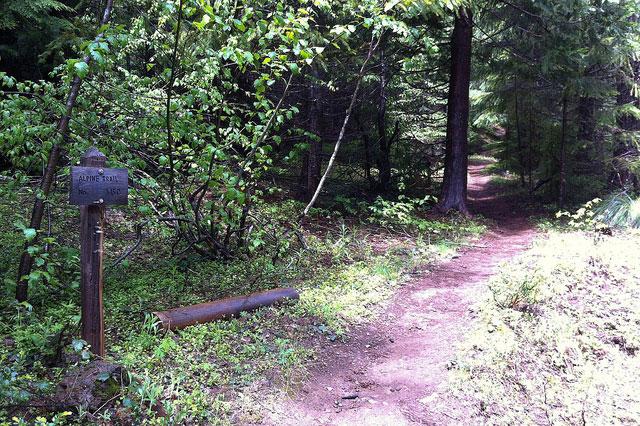 oregon-alpine-trail