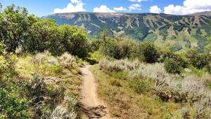rim trail loop colorado