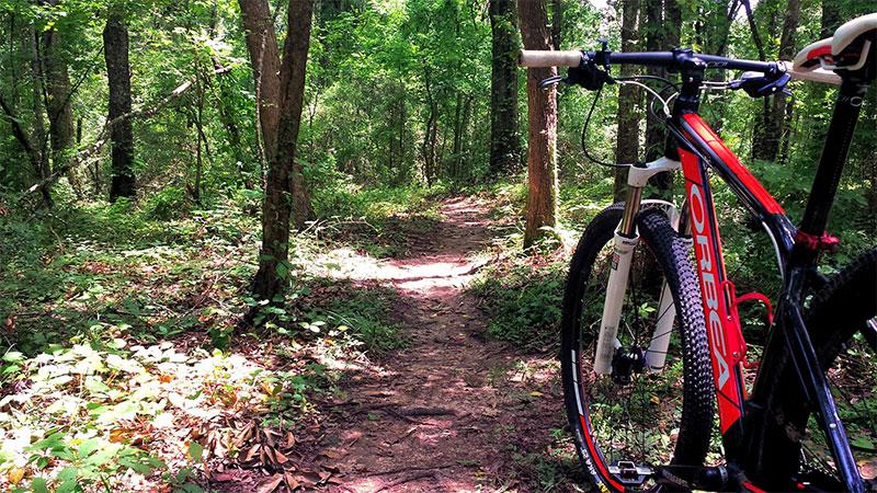Mountain Bike Acadiana