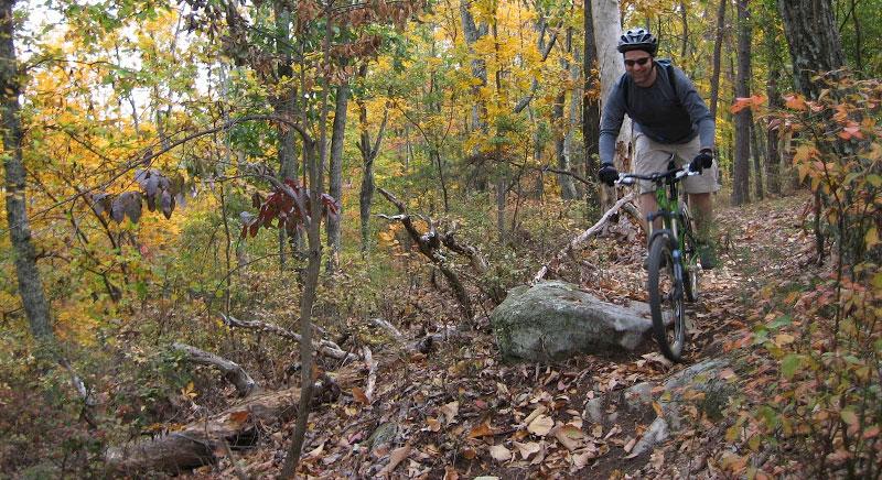 raccoon mountain mtb trail