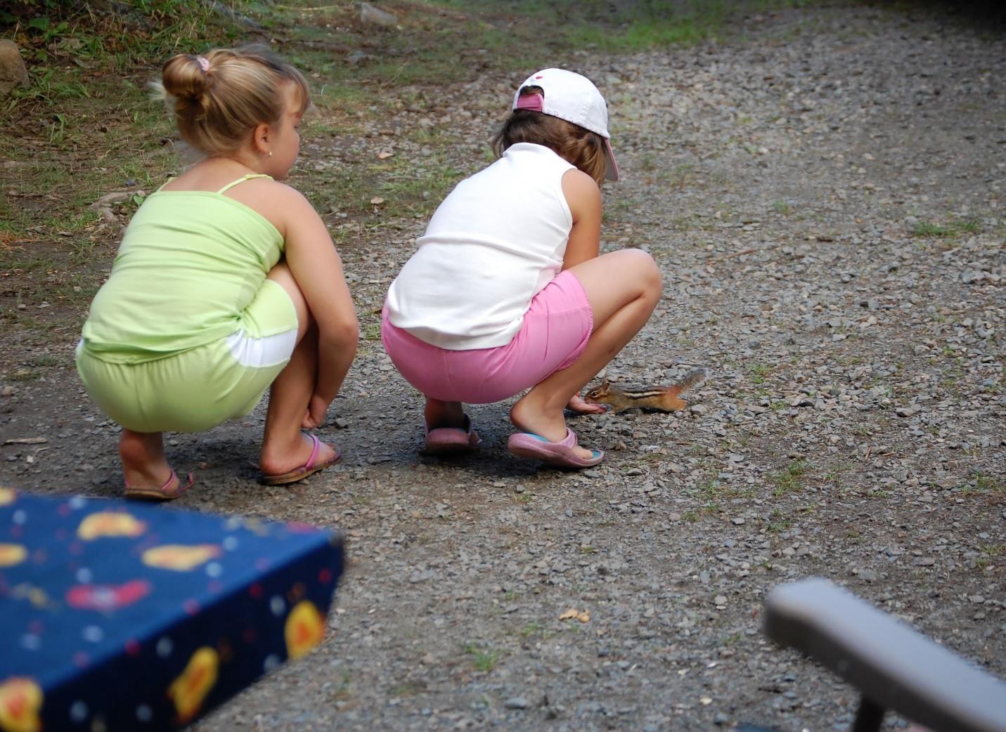 kids and wildlife
