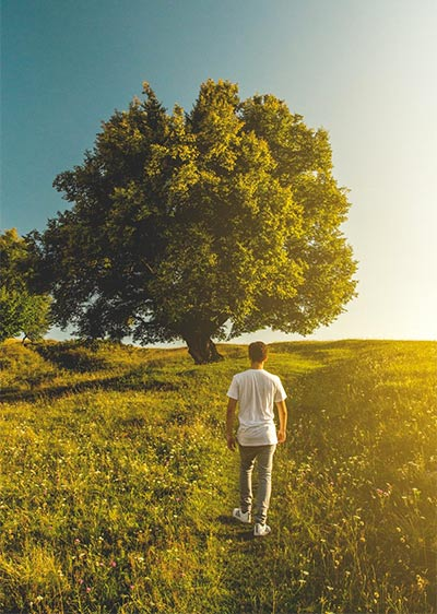 guy in field with tree