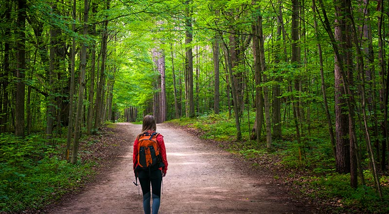 woman green hiking path