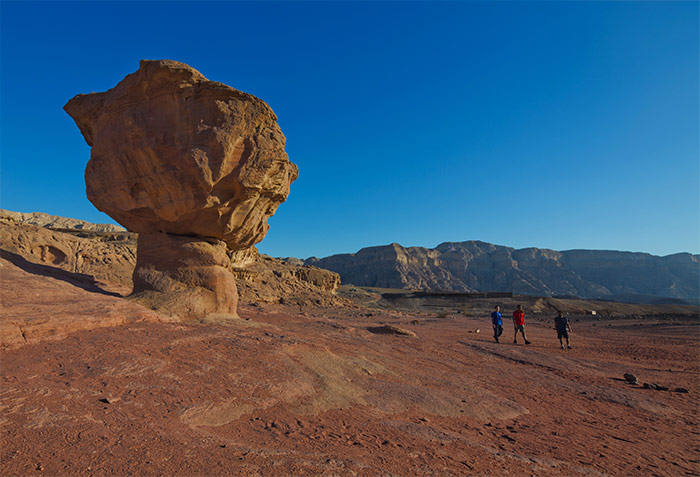the mushroom in Timna Park