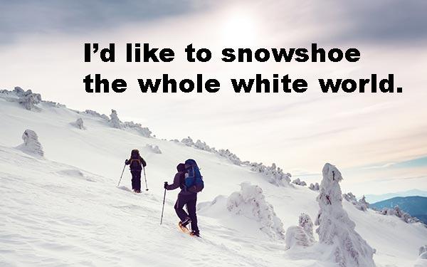 snowshoeing pun